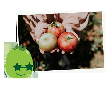 Naturelly Impact Fruit Waste